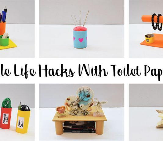 10 Simple Life Hacks With Toilet Paper Rolls 0